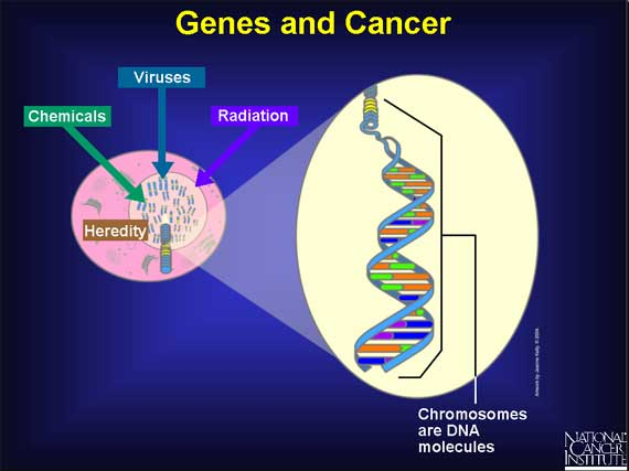 Genes and Cancer